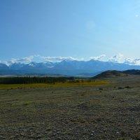 Северо -Чуйский хребет. :: Валерий Медведев