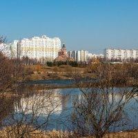 Вот и весна. :: Владимир Безбородов