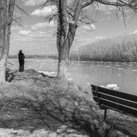 Наблюдаем ледоход 4 :: Валерий Михмель