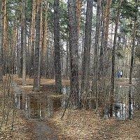 Апрель :: натальябонд бондаренко