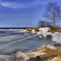 бухта на Ладожском озере :: Георгий