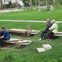Весна в парке :: Mariya laimite