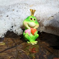 И вновь весною сердце млеет..:) :: Андрей Заломленков