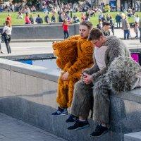 Про медведей... :: Сергей Офицер