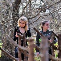 Пока листвы нет, девушки украсят любой пейзаж! :: Татьяна Помогалова