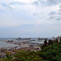 Вид на порт со смотровой площадки «Мирадор дель Алькальде». Барселона :: Татьяна Ларионова