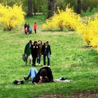 Весна. :: Sergii Ruban