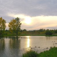 Закат, озеро, утки... КРАСОТА ! :: Лия ☼