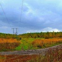 Дороги осени :: Геннадий