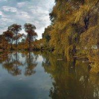Осень :: BD Колесников