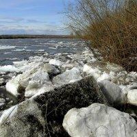 Ледоход-лёд идёт. :: nadyasilyuk Вознюк