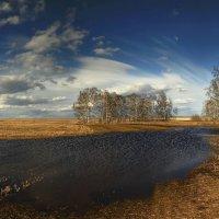 Весенние разливы 2 :: Сергей Жуков