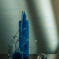 Натюрморт в синих тонах :: Ирина