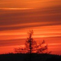 Последний закат :: Mariya laimite