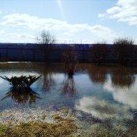 Наводнение :: Валентина (Panitina) Фролова