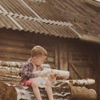 Хорошов деревне летом :: Ирина Беленкевич