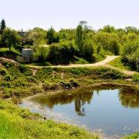 озеро в Старой Волотаве :: Александр Прокудин
