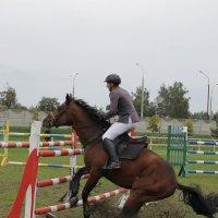 а прыгать не хочу :: Александр Жукович