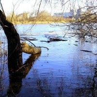 Большая вода на Оке. :: Борис Митрохин