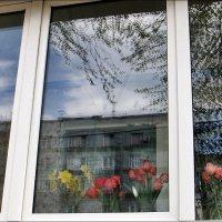 Праздник весны! :: Нина Корешкова