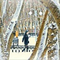 В Североморске снег... :: Кай-8 (Ярослав) Забелин