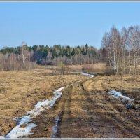 Весна :: Vadim WadimS67