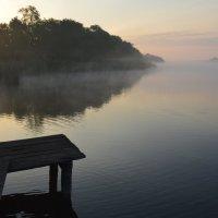 Утро на пруду. :: Виктор