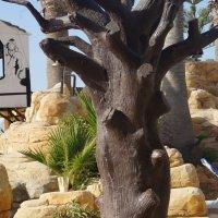 Декоративное дерево :: Лариса