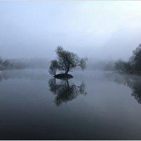 Утро туманное... :: Валерия Комова