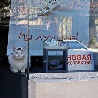 когда реклама не врет... :: Александр Корчемный