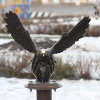 Лети, голубь :: Дмитрий Солоненко