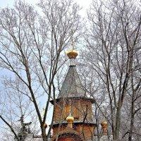 Весна :: Леонид leo