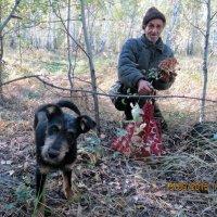 Опята :: Светлана Рябова-Шатунова