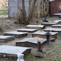 Там где живут хоббиты :: Мария Сидорова