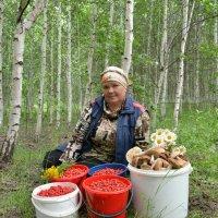 В лес по ягоды) :: Елена Салтыкова(Прохорова)