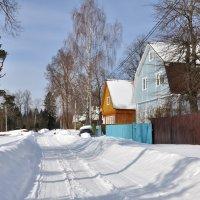 Март в деревне :: Ольга Малышева