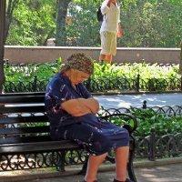 утомленная жизнью :: Александр Корчемный