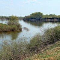 Задумчиво течение воды... :: Лесо-Вед (Баранов)