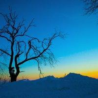 Персиковый зимний закат :: Никита Оберник