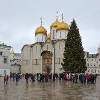 Рождество в Москве :: mv12345 элиан