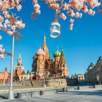Цветочная весна :: Юлия Батурина