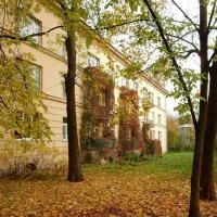 Осенью в Пушкине :: Елена Гуляева (mashagulena)