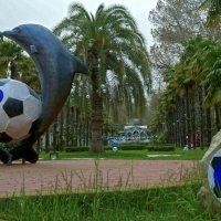 """Дождливый март в Сочи. """"Дельфины с мячом"""". :: Elena Izotova"""