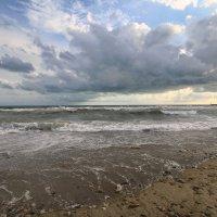 Черное море :: ninell nikitina