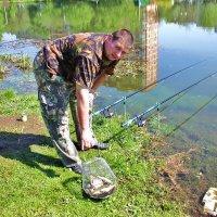 Ловись рыбка большая.... :: tat
