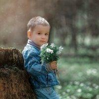 Весна :: Марина Воронкова