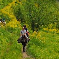 конные туристы :: santamoroz