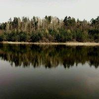 с. Новогуйвинск Украина :: Юлия Смирнова