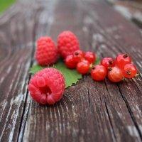 Яркие ягодки лета :: Татьянка *