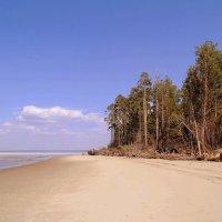 Сброс воды . Песчаный берег. :: Мила Бовкун